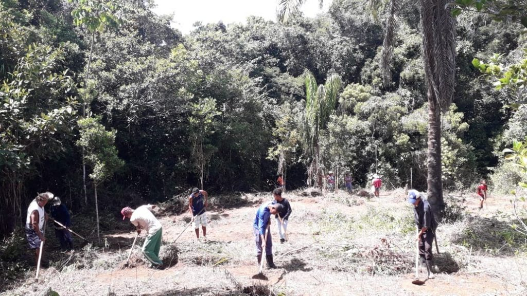 Mutirão com tupinambá e militância da Teia dos Povos na área da nova agrofloresta na Aldeia Tukun em Ilhéus - Bahia.